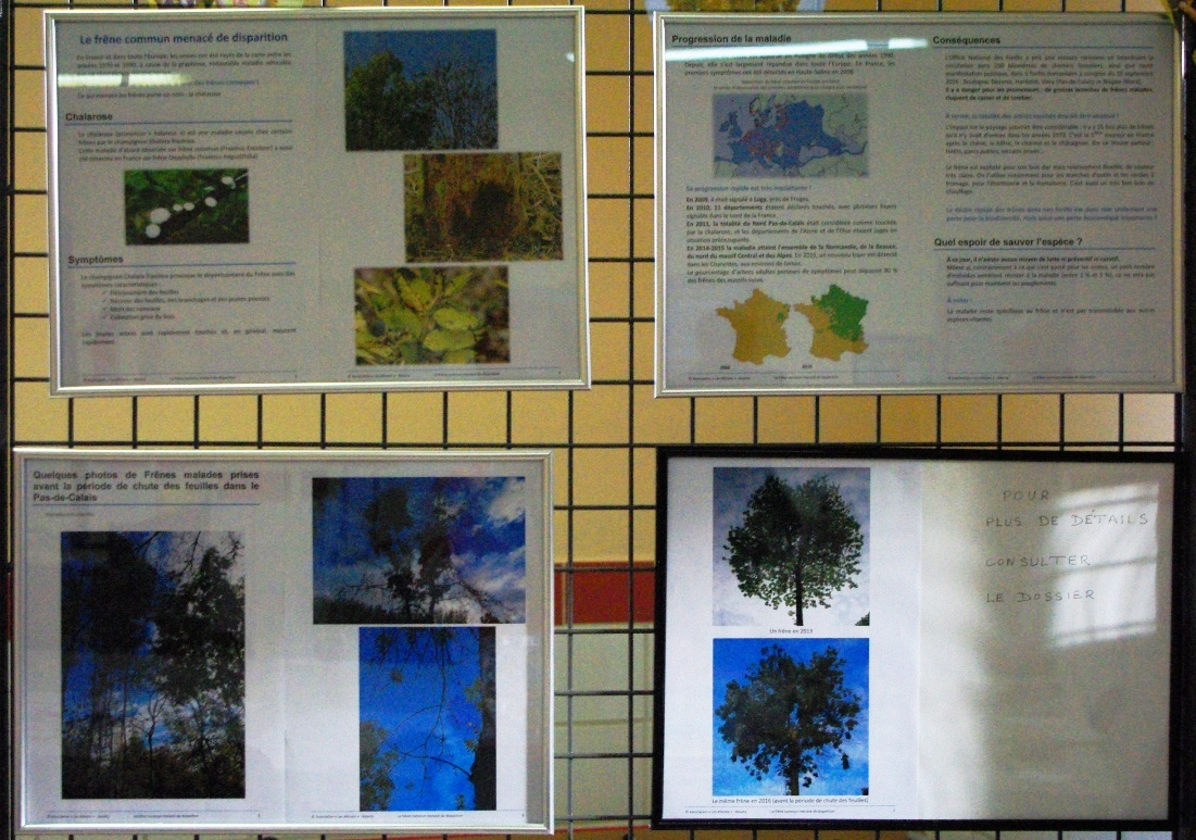 écologie beuvry